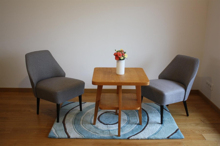 Furniture of living room. B.Adomoniene.
